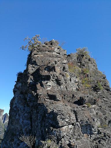 2020-10-25 深尾様ローソク岩