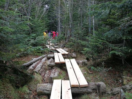 白駒池登山道整備